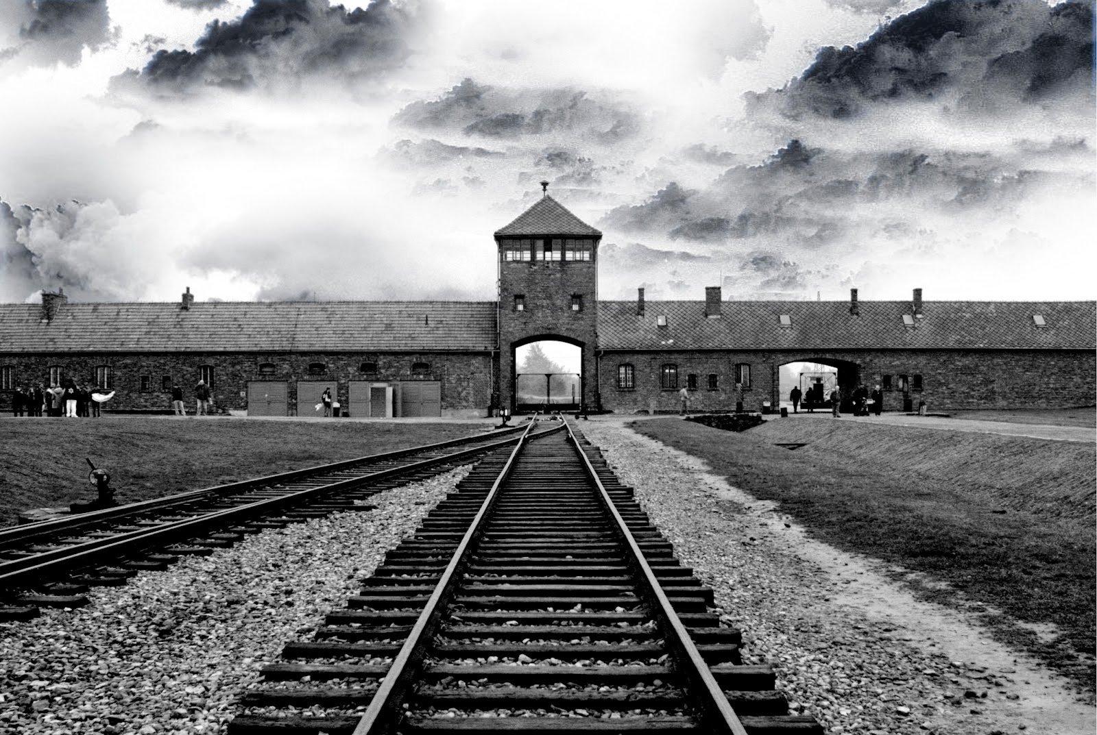 Holocausto e Direitos Humanos
