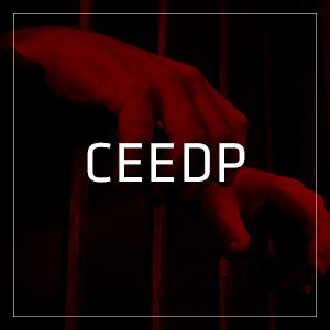 01_CEEDP00