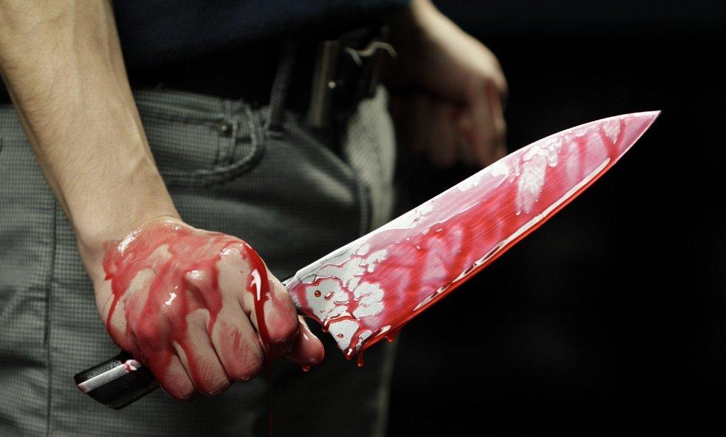 O Manual do Serial Killer