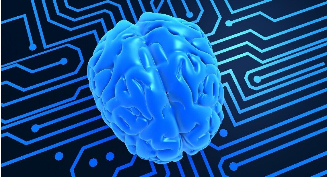 "Neurociência e a ""crise"" da culpabilidade penal"