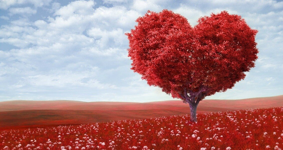 Mais amor, por favor – mas o recado é para os juristas