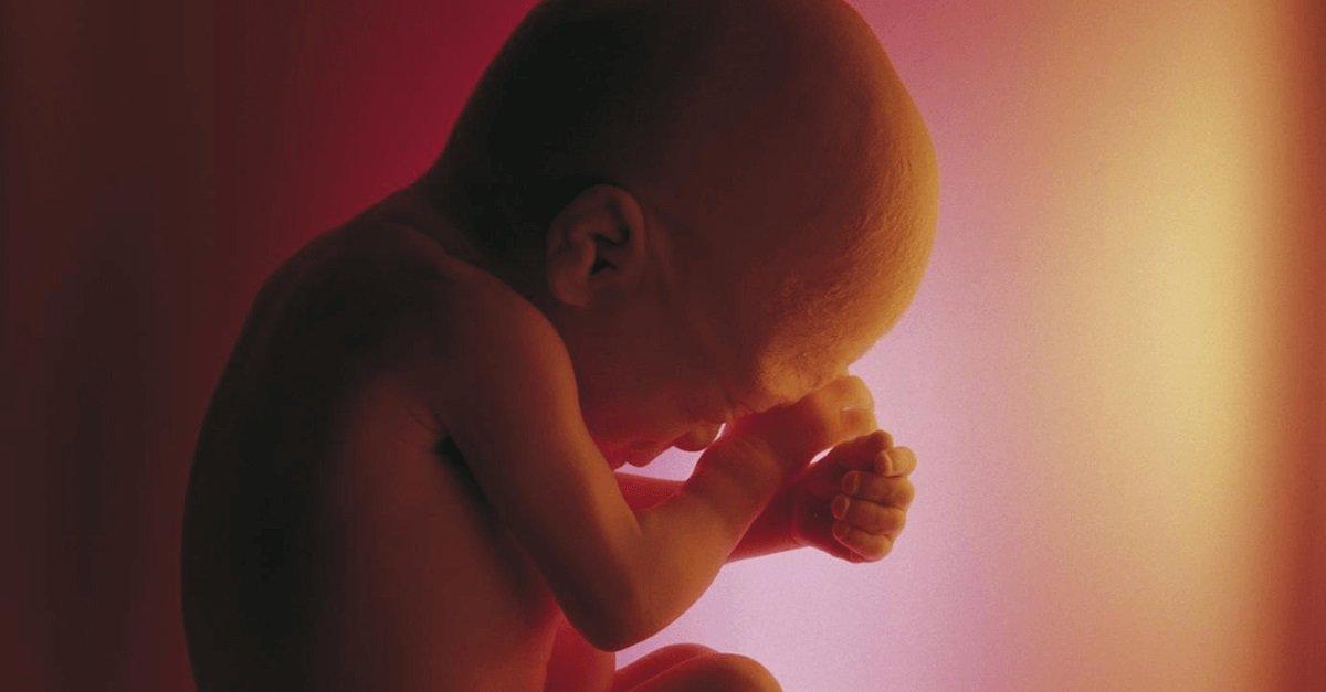 A descriminalização do aborto no estágio inicial de gestação