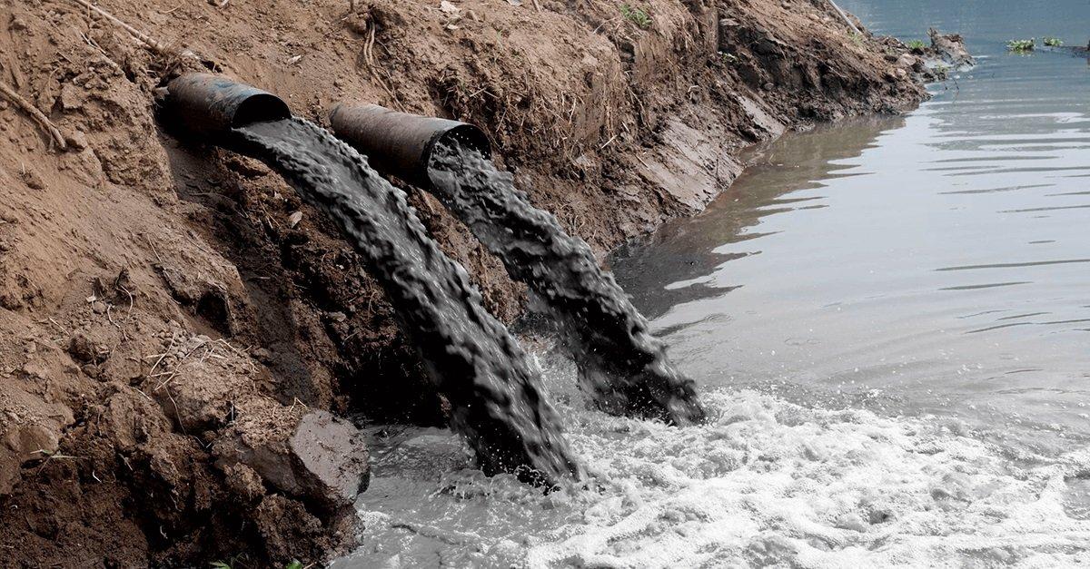 Crimes ambientais e o princípio da insignificância