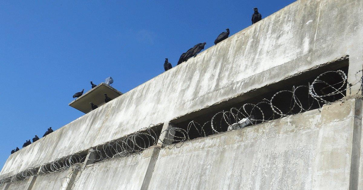 Grades, polícia e miséria na ilha-capital do Espírito Santo