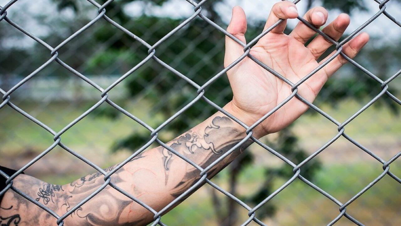 Tatuagem Se Voce Tem Ou Quer Ter Tatuagem Nao Deixe De Ler