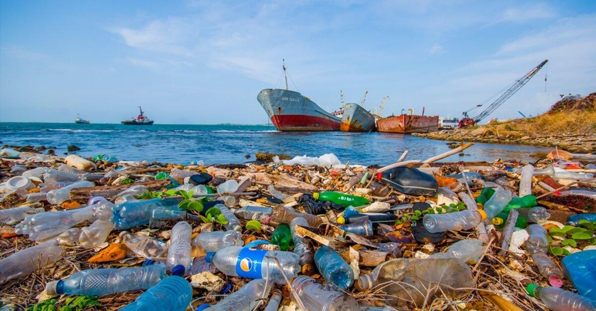 Crimes ambientais 'em níveis tais'