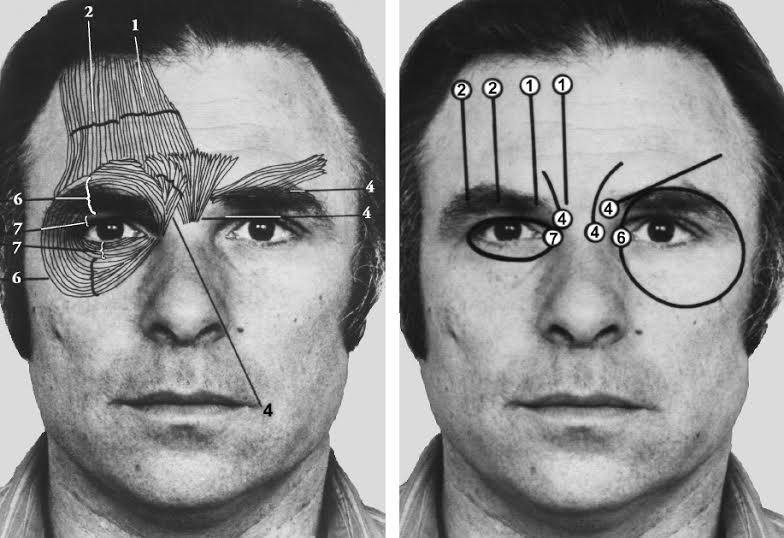 microexpressões faciais 02