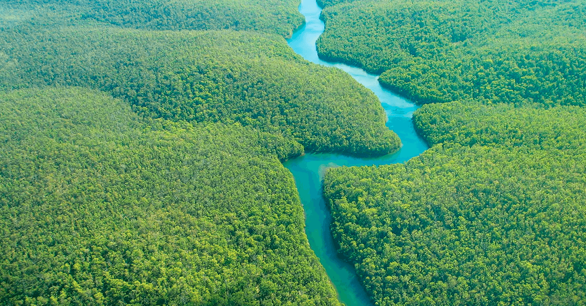A legislação ambiental no Brasil