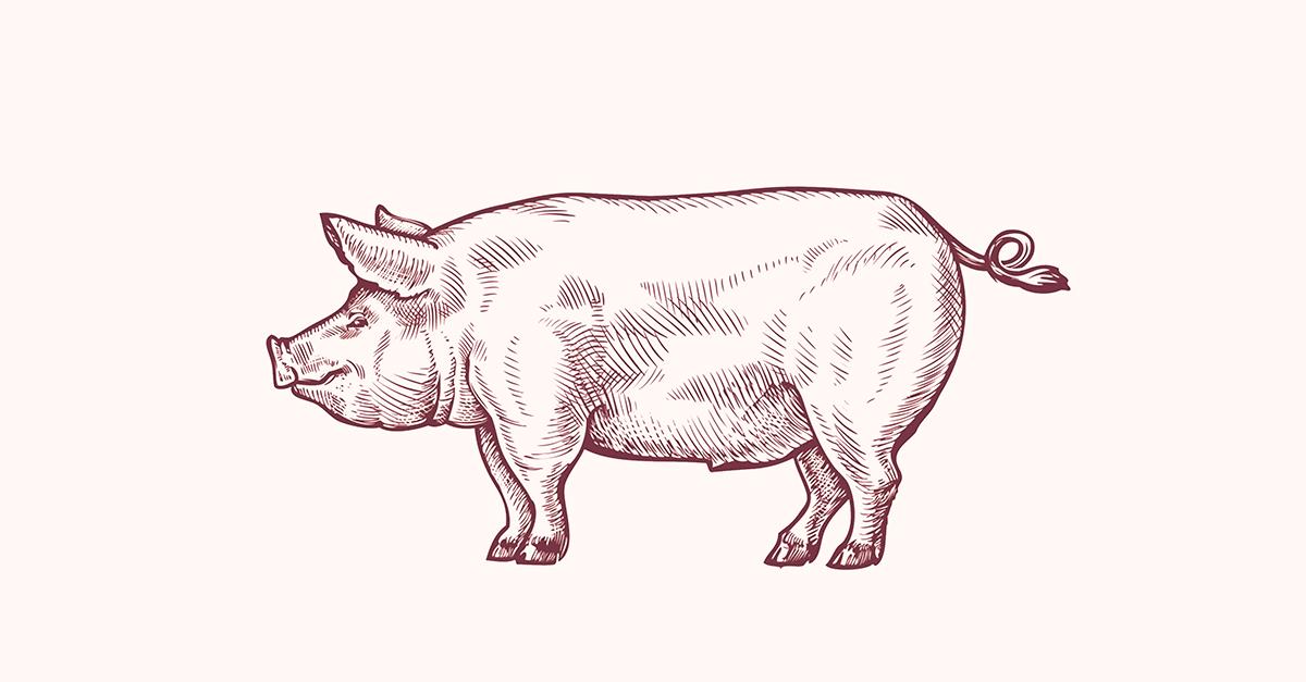 A revolução dos bichos e os porcos do Direito