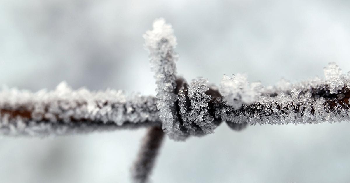 """Winter is coming: um cruel """"inverno"""" se aproxima para a execução penal"""
