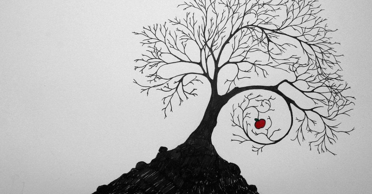 Teoria do fruto da árvore envenenada, provas e crimes econômicos