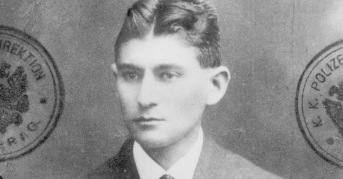 Da vulnerabilidade social de Zola à desumanização em Kafka