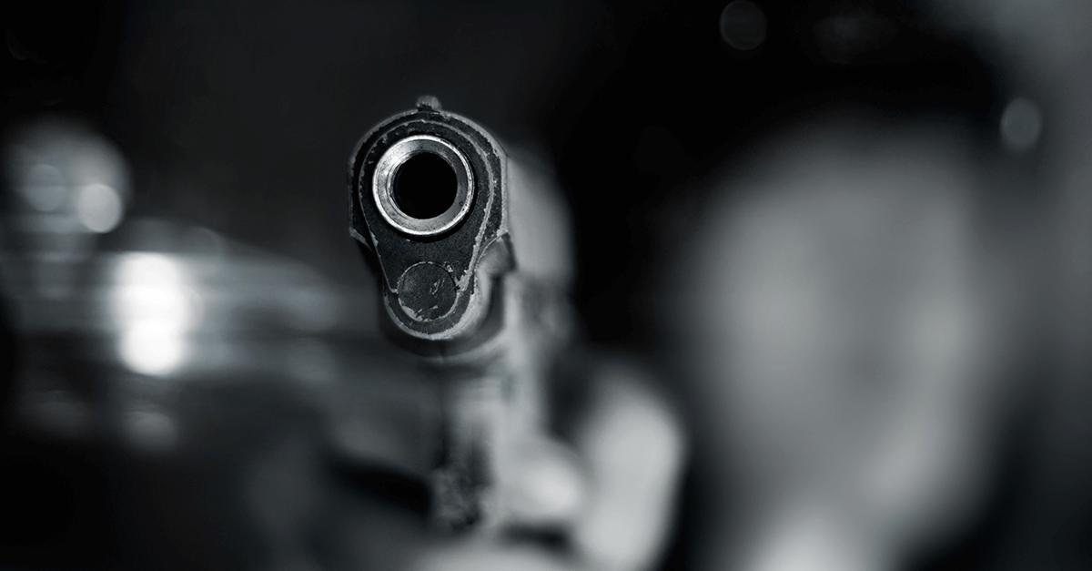 Violência e posse de arma de fogo