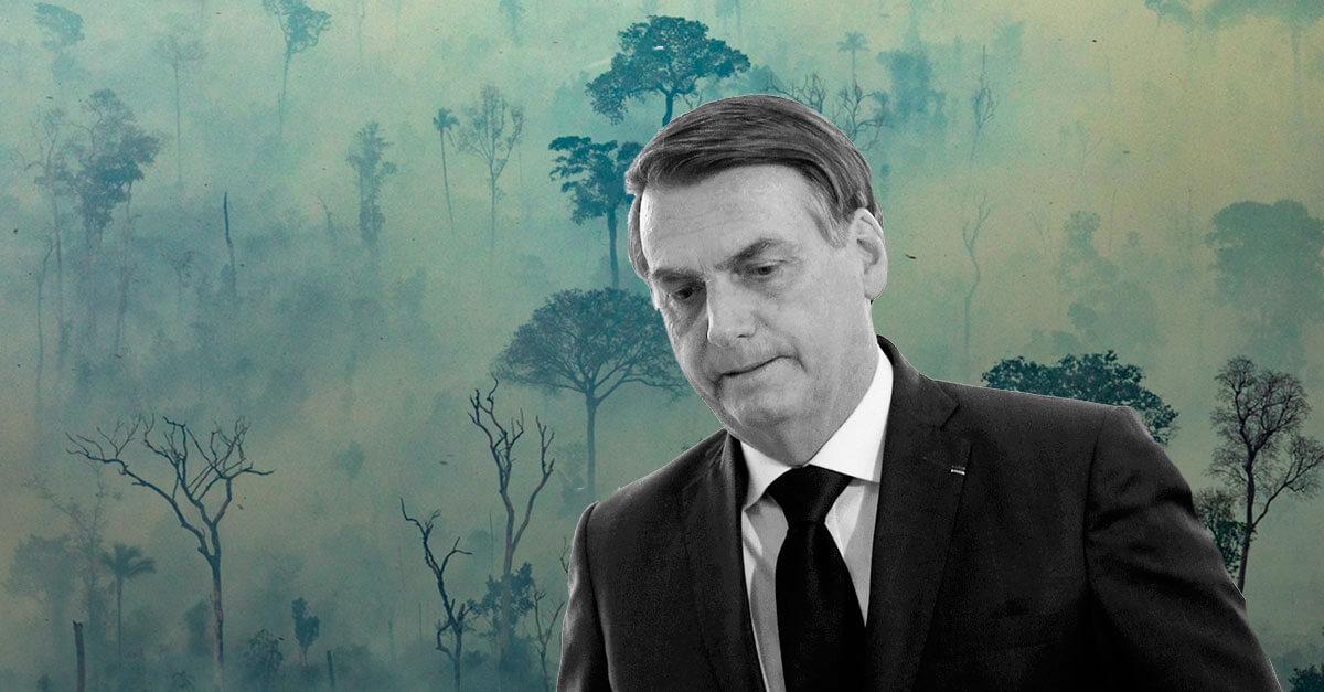 Ecocídio e a responsabilidade penal de Jair Bolsonaro