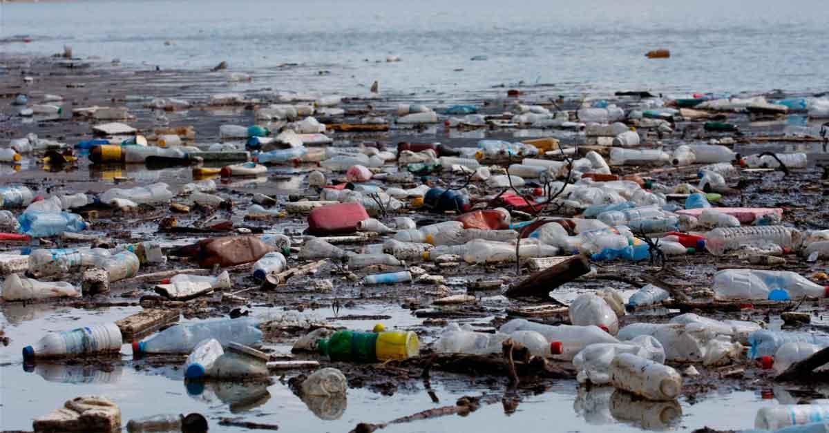 STJ: perícia é imprescindível se existem vestígios de crime ambiental