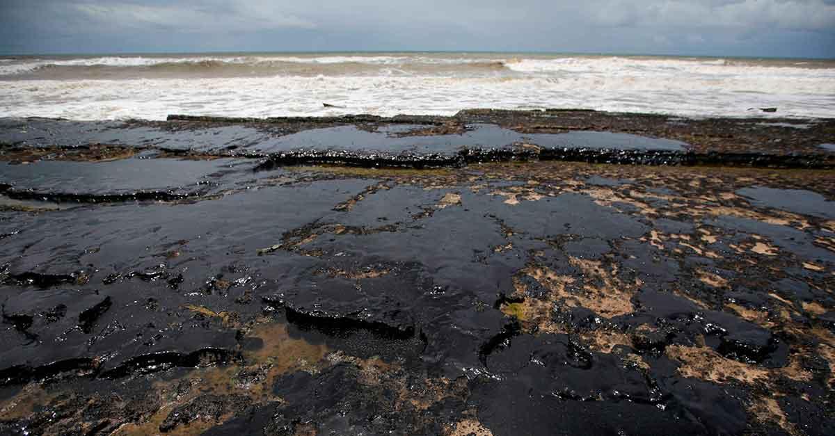 Manchas de óleo no Nordeste: a omissão de Bolsonaro é penalmente relevante?