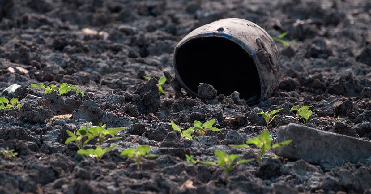 A proteção ao meio ambiente como direito humano fundamental