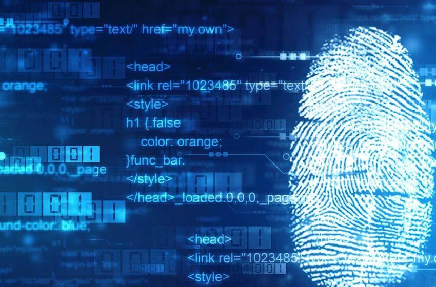 Auxílio emergencial indevido e investigação criminal tecnológica