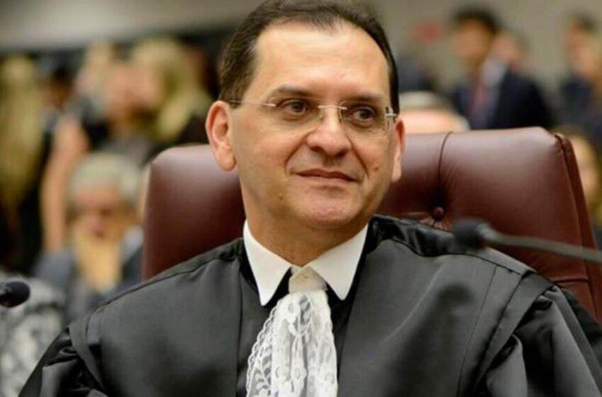 OAB não pode atuar como assistente de defesa de advogado réu em ação penal, decide STJ