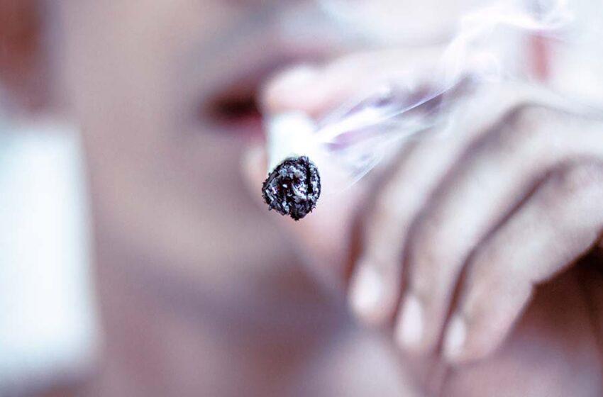 E se a cannabis fosse excluída da lista de drogas ilícitas no Brasil…